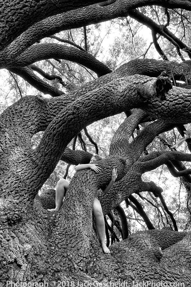 woman-hugs-giant-tree-Photograph-by-Jack-Gescheidt-TreeSpirit-Project.com-0300-BW-1000p.jpg