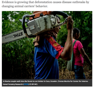 Smithsonian-article-Deforestation-Contributes-to-disease-spread.png