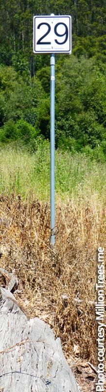 Signpost-29-mile-marker-NARROW-800p-WEB
