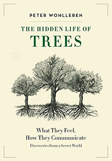 The-Hidden-Life-of-Trees-book-cover-WEB