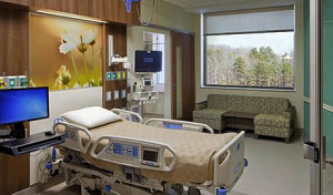 hospital-room-window-view-trees.jpg