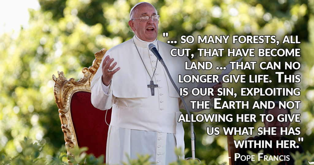pope-forests-cut-exploit-the-land
