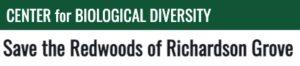 Save-Richardson-Grove-State-Park-Redwoods-TreeSpirit-Center-for-Biological-Diversity-petition.jpg