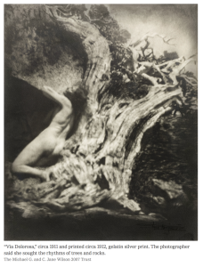 Anne-Brigman-Soul-of-the-Blasted-Pine-1906-New-York-Times-Rebecca-Kleinman.jpg