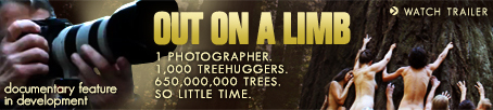 """Out On A Limb,"" the TreeSpirit documentary film"