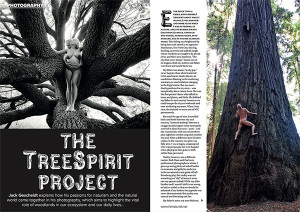 H&E-England-mag-Aug-2018-TreeSpirit-feature-PAGE-1-2-600p-WEB
