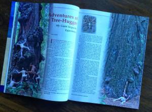 N-Mag-Giant-Sequoias-trip-Winter-2005-6-pg1-2-6033-1000p-WEB.jpg