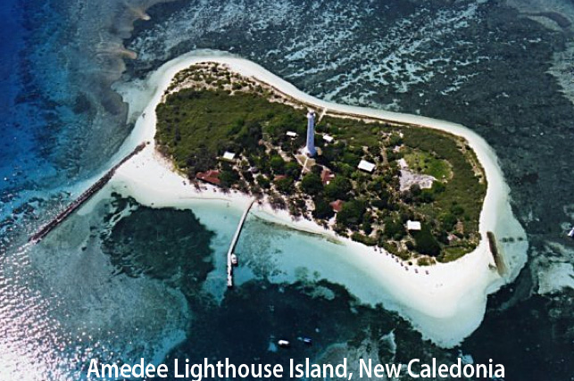 Amedee Island bird's-eye view