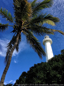 Amedee-palm-and-lighthouse_7438_1200p_WEB