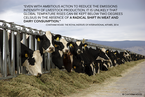 Chatham-House-meat-emissions-quote-Dec-2014