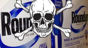 Roundup_-lyphosate-SKULL-crossbones-CROP