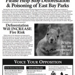 Save-East-Bay-Hills-squirrel-FLYER-500p-WEB