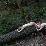 The-Killing-Jack-Gescheidt-TreeSpirit-1200p-WEB