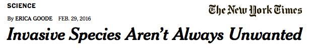 New-York-Times-Invasive-Species-Aren't-Always-Unwanted-2.29.16-WEB.jpg