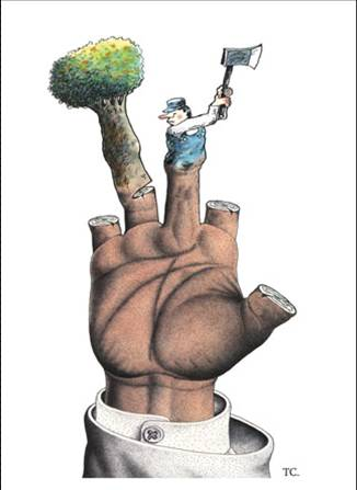 deforestation-hand-axe-illustration-by-TC.jpg