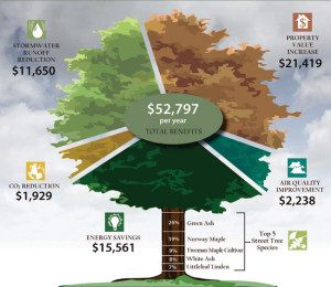tree-benefits-many-$52K