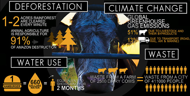 Cowspiracy-animal-factory-FACTS.jpg