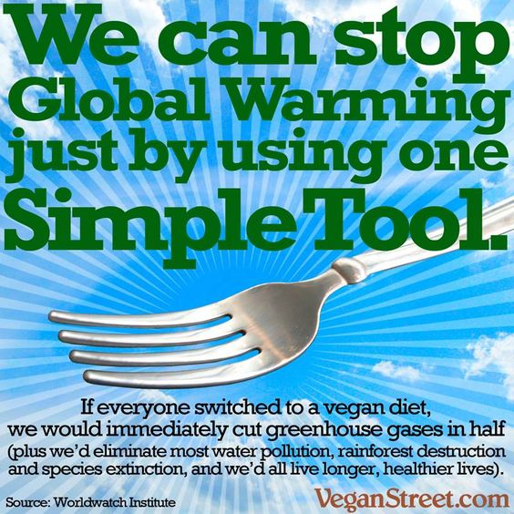 global-warming-stop-TOOL-fork.jpg