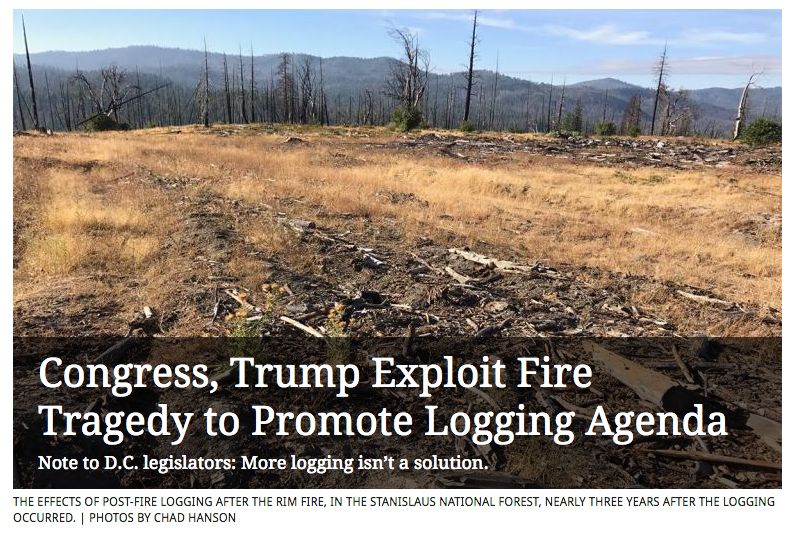 Congress-Trump-Exploit-Fire-Tragedy-to-Promote-Logging-Agenda-Chad-Hanson-Sierra-Magazine.png