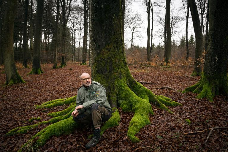 peter-wohlleben-portrait-tree.jpg