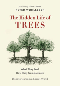 the-hidden-lives-of-trees-book-cover.jpg