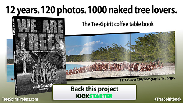 12-years-120-photos-1000-naked-tree-lovers-TreeSpirit-Book-600p copy