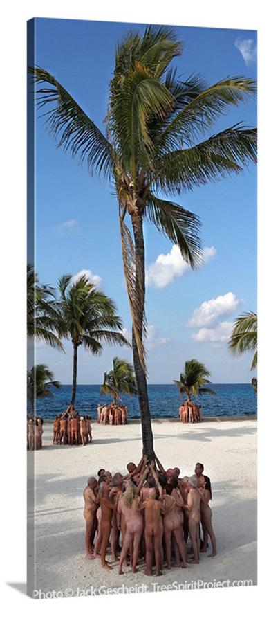 Hawaiian-TreeSpirits-Hearts-of-Palms-TreeSpirit-Project-EXCERPT-narrow-CANVAS-900p-WEB