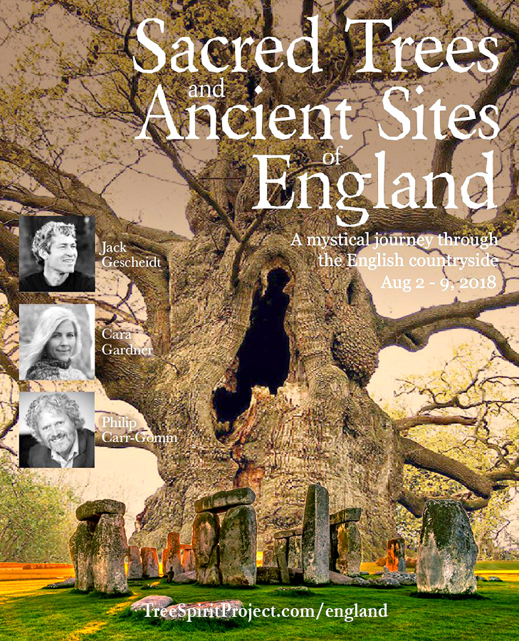 Sacred-Trees-Ancient-Sites-of-England-TreeSpirit-Project-flyer-v5-events-900p-WEB.jpg
