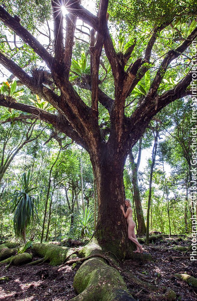 monkey-love-TreeSpirit-Project-1313-1000p-WEB