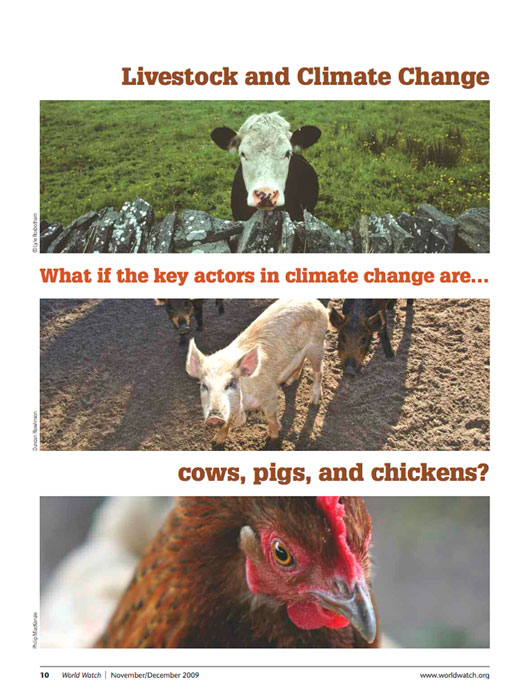 Livestock-and-Climate-Change-WORLDWATCH-Dec-2009-REPORT-cover-700p-WEB