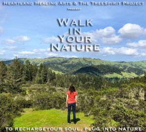 Walk-In-Your-Nature-TreeSpirit-Project-SKY-POSTER-2-v1-750p-WEB.jpg
