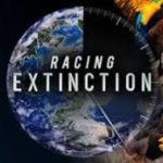 Racing-Extinction-Discovery-Channel-cattle-deforestation-methane-gas.jpg