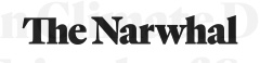 The-Narwhal-Canadian-coal-company-funds-Friends-of-Science-climate-crisis-denial.jpg