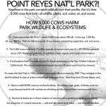 SAVE-ELK-Point-Reyes-National-Seashore-Park-overview-1-sheet-handout-v1.jpg