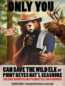 ONLY-YOU-CAN-SAVE-ELI-vintage-Smokey-Bear-poster-PRNS-ELK-v6-w-TSP.jpg