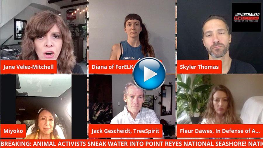 Jane-Unchained-VIDEO-INTERVIEW-5-add-MIYOKO-activists-Point-Reyes-elk-9.8.20.jpg
