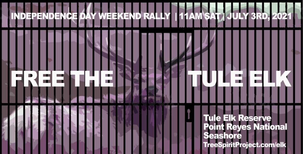 FREE-THE-TULE-ELK-July-3-2021-RALLY-PRNS-FB.jpg