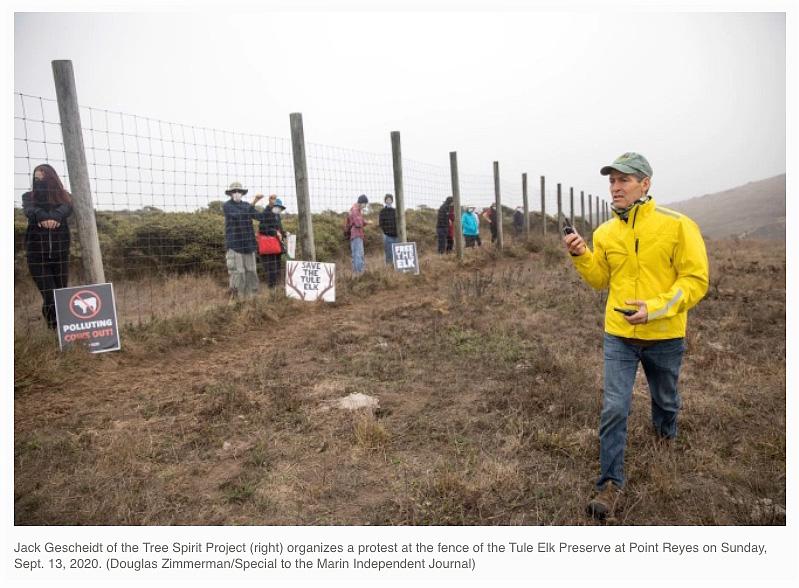 Jack-Gescheidt-of-TreeSpirit-Project-at-Point-Reyes-National-Seashore-Tule-Elk-Reserve-fenceline-photo-Doug-Zimmerman-Marin-IJ-Will-Houston