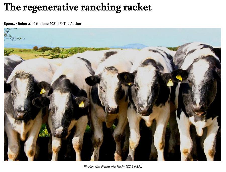Regenerative-Ranching-Racket-Spencer-Roberts-The-Ecologist-June-14-2021-900p.jpg