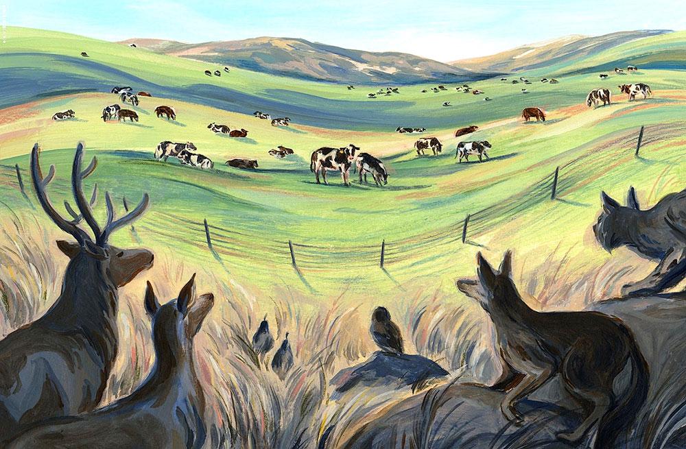 Myth-of-Regenerative-Ranching-New-Republic-art-Sally-Deng-1000p-WEB