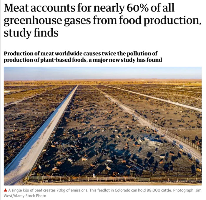 meat-accounts-for-60%-of-greenhouse-gases-food-production-Guardian-9.13.21-700p