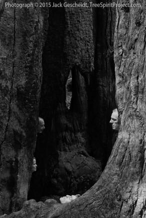 In-The-Woodwork-TreeSpiritProject-Jack-Gescheidt-0389-BW-1000p-WEB