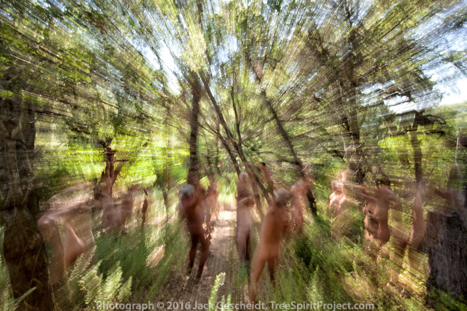 Electric-Forest-TreeSpirit-Project.jpg