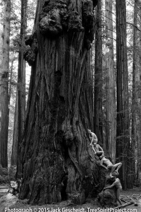 father-time-treespirit-project-jack-gescheidt-1000p-web.jpg