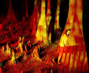 Cypress Trippy (red)