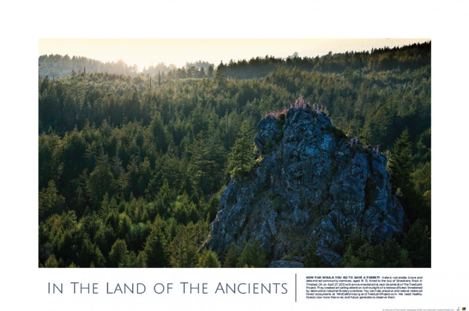 """""""In The Land of The Ancients"""" POSTER"""