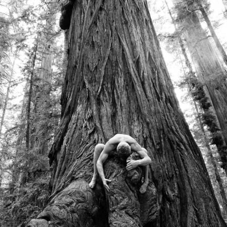Big Wood Love