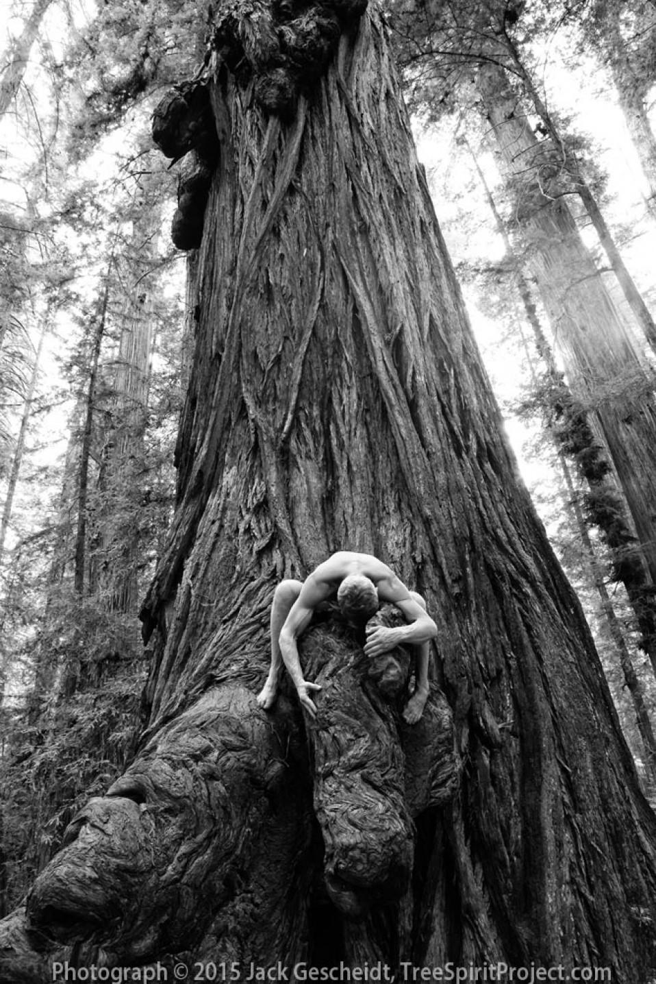 Big-Wood-Love-TreeSpiritProject-Jack-0148-1000p-WEB